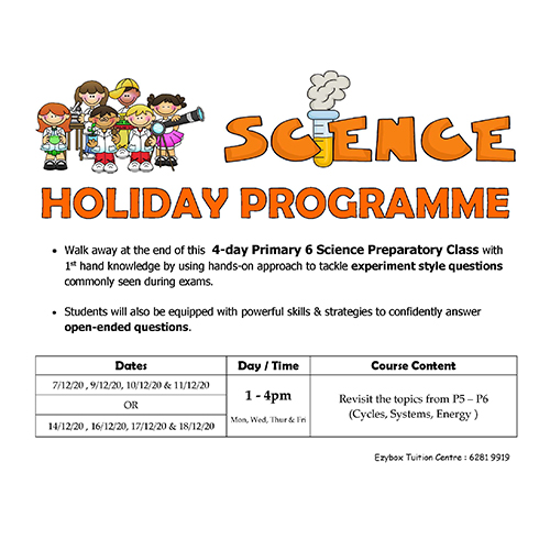 2020 Dec Science Holiday programme (P6)